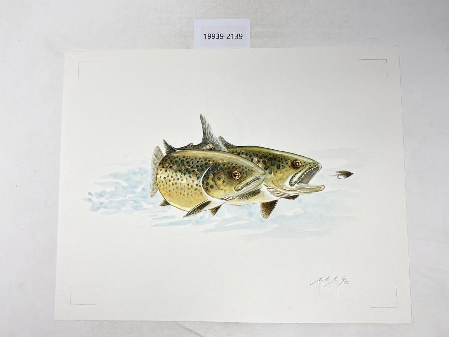 Aquarell von Maden Merkas Goranin, 1996, 2 Forellen, 390x310mm
