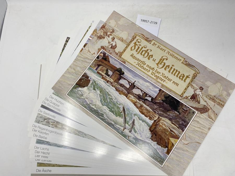 13 Drucke, Aquarelle nach der Natur von Richard Wagner