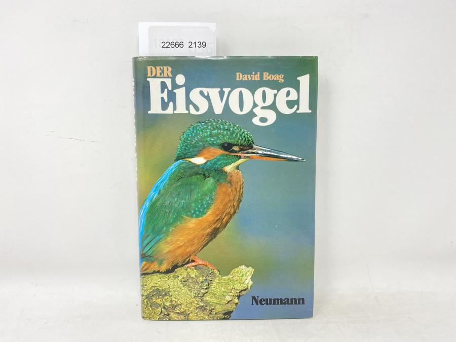 Der Eisvogel, David Boag, 1983