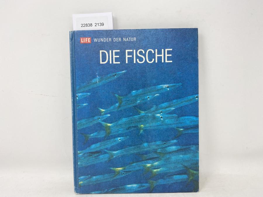 Die Fische Life Wunder der Natur, F.D. Ommanney, 1973